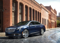 Cadillac XTS W20 Livery Package Towne Livery Vehicles